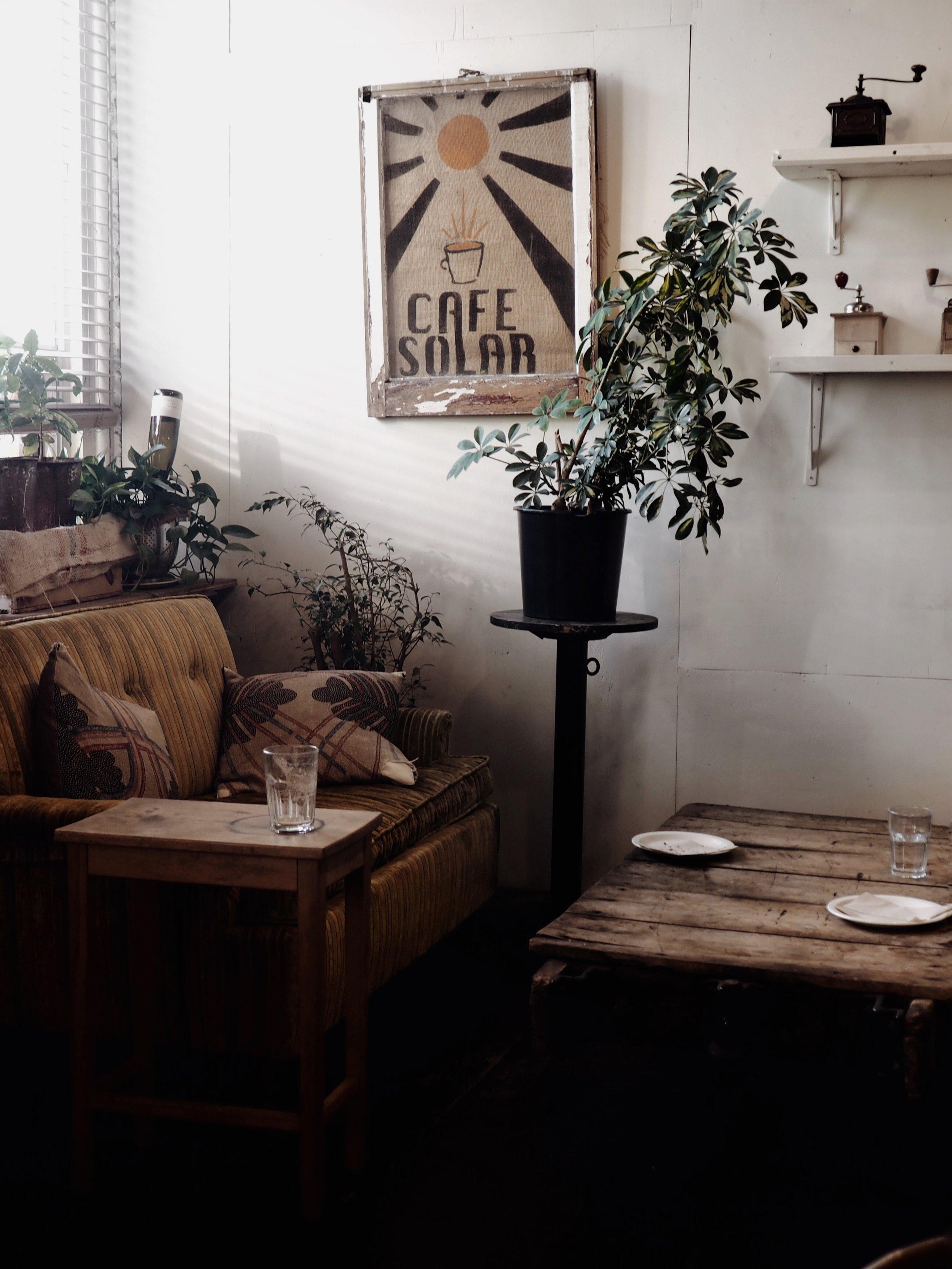 cafe solar coffee shop