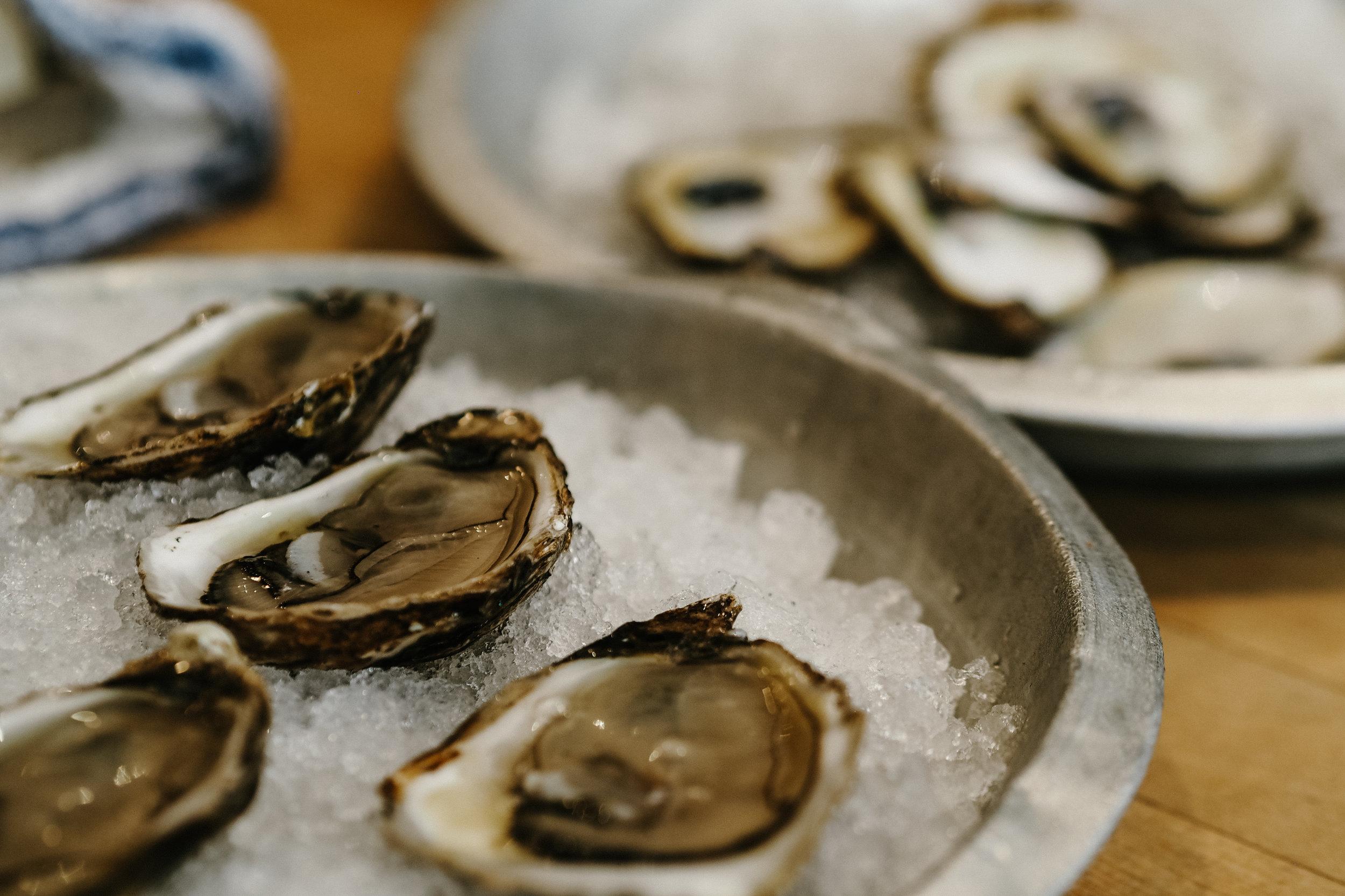 oyster boy Toronto