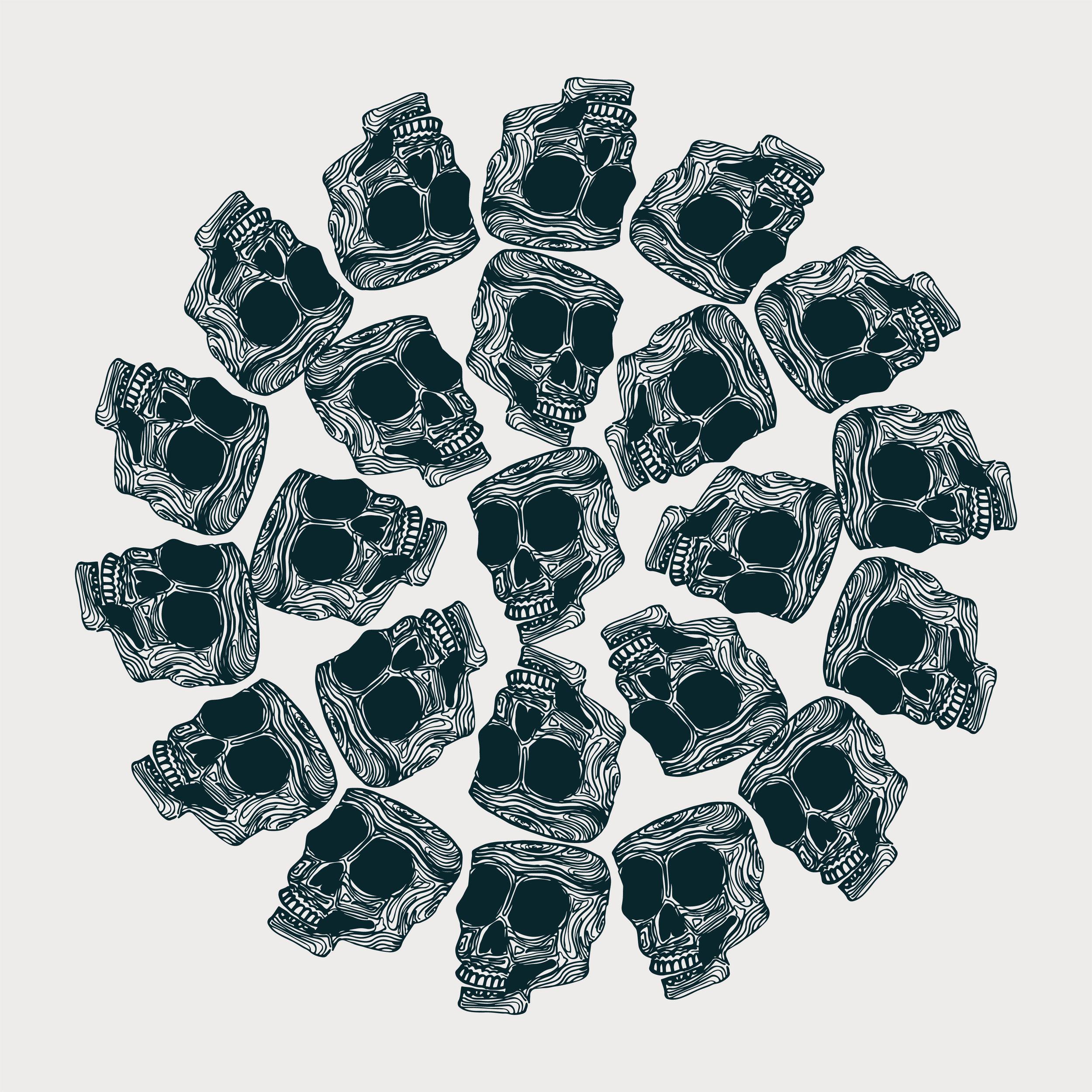 skull5-01-lr.jpg