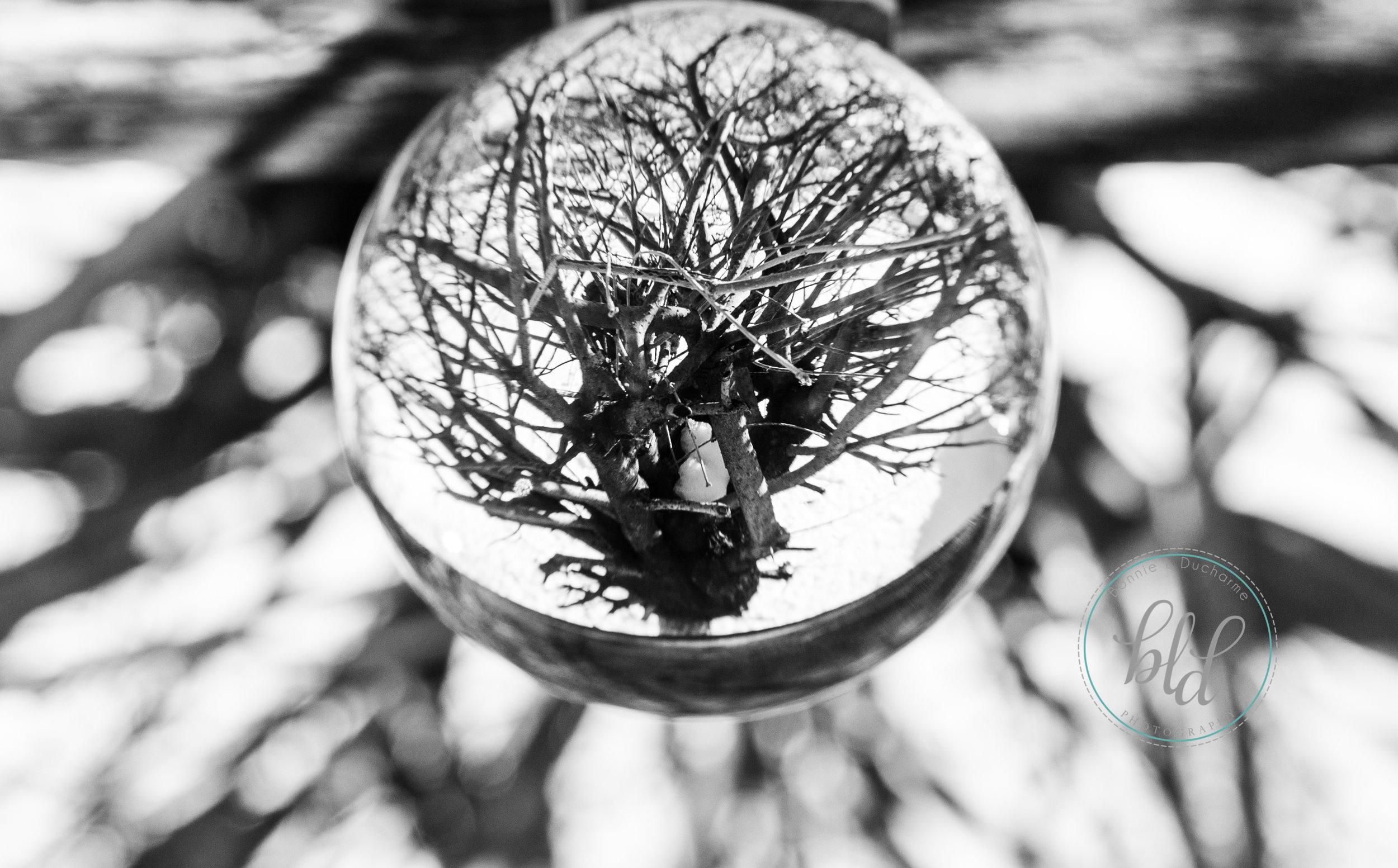 crystal ball-2.jpg