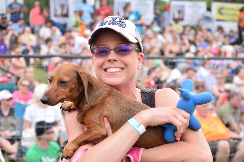 Wiener dog races 2017.jpg