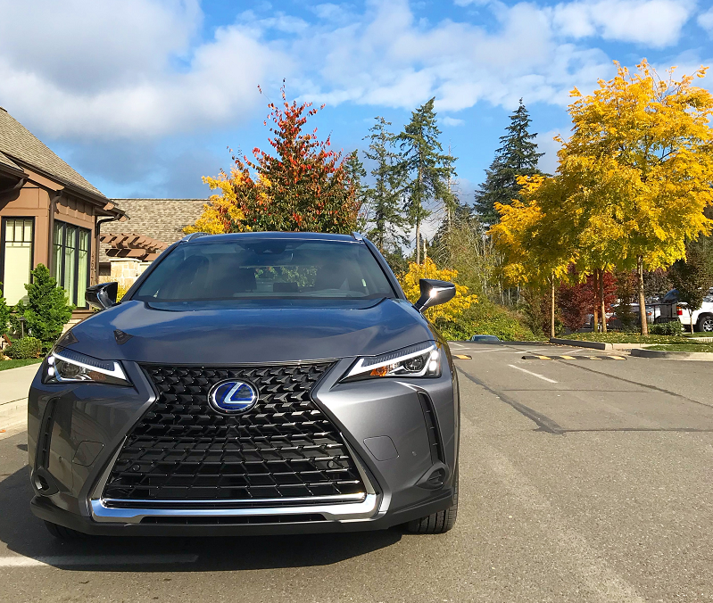 Lexus UX w fall colors.png