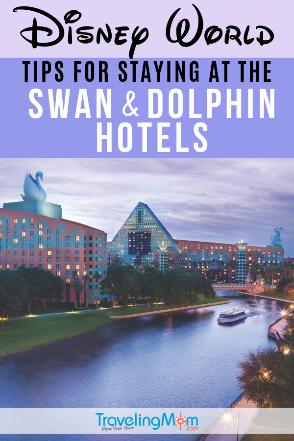Swan and Dolphin.png