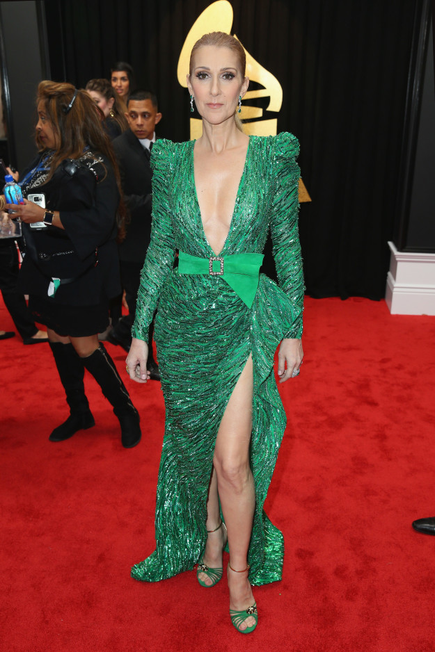 Celine Dion - Not sold on the frock but got to give her props for still going to all the effort.