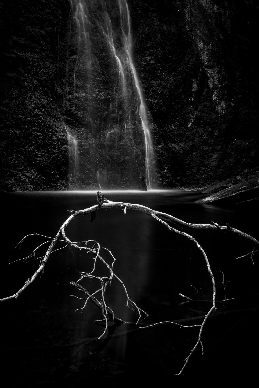 Boundary Falls, Gibraltar Range National Park [NEW13]