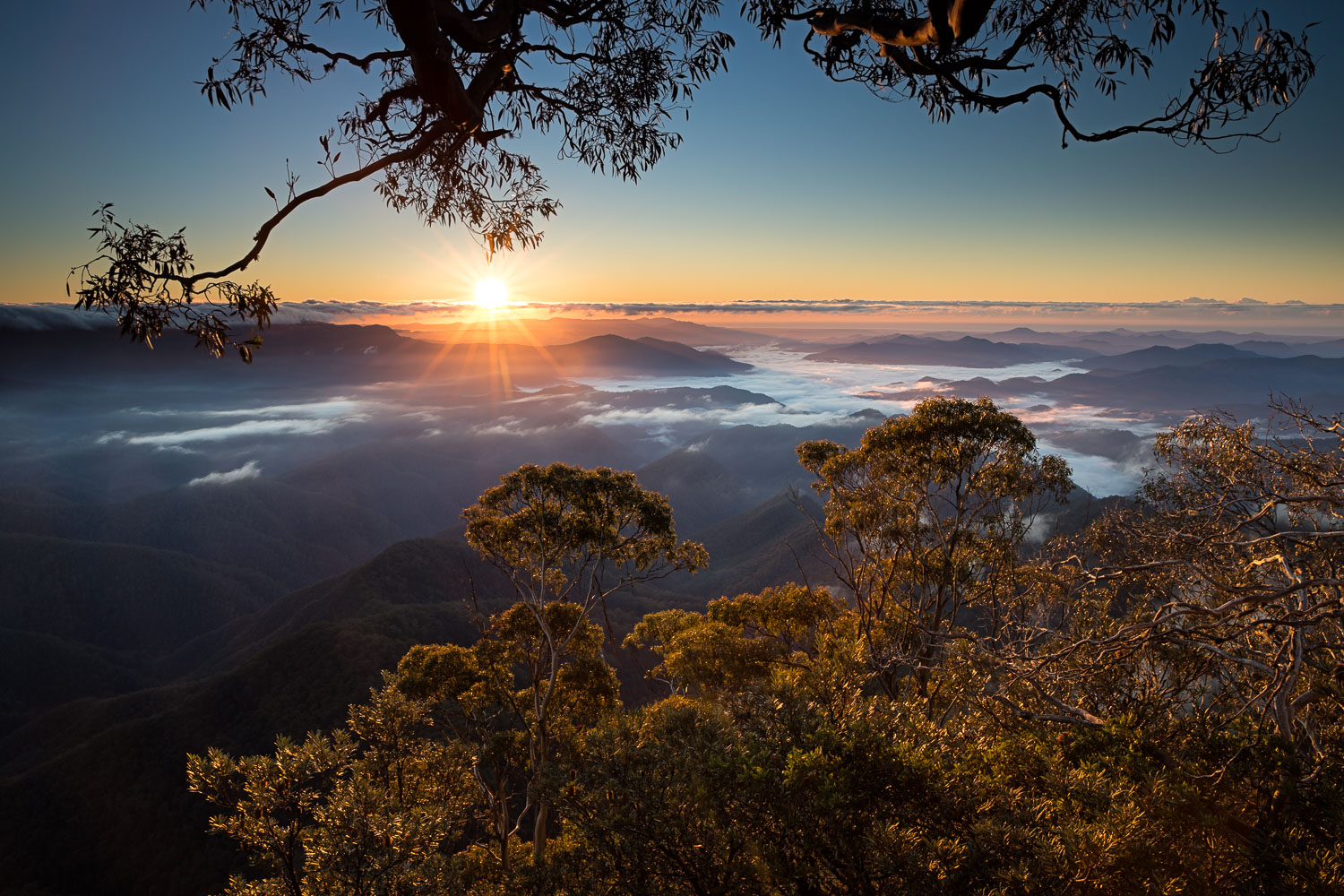 Point Lookout, New England National Park [NEW19]
