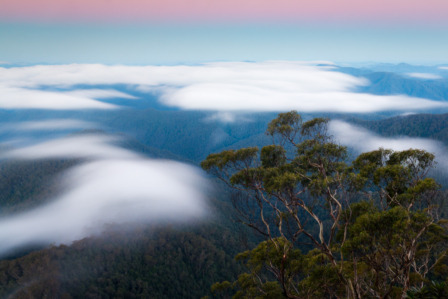 Point Lookout, New England National Park [NEW21]