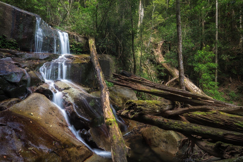 Summit Falls, Washpool National Park [NEW11]