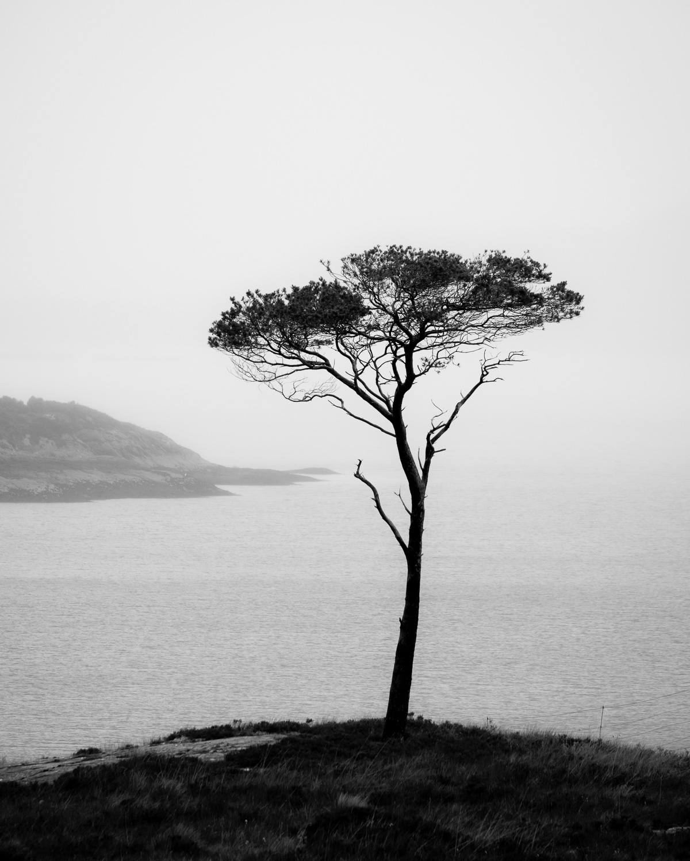 Loch Torridon, Wester Ross [SCO27]
