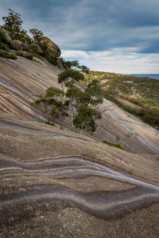 Mount Norman, Girraween NP [GIR21]