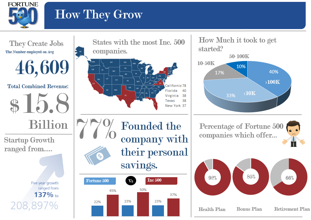 Fortune 500 Infographic