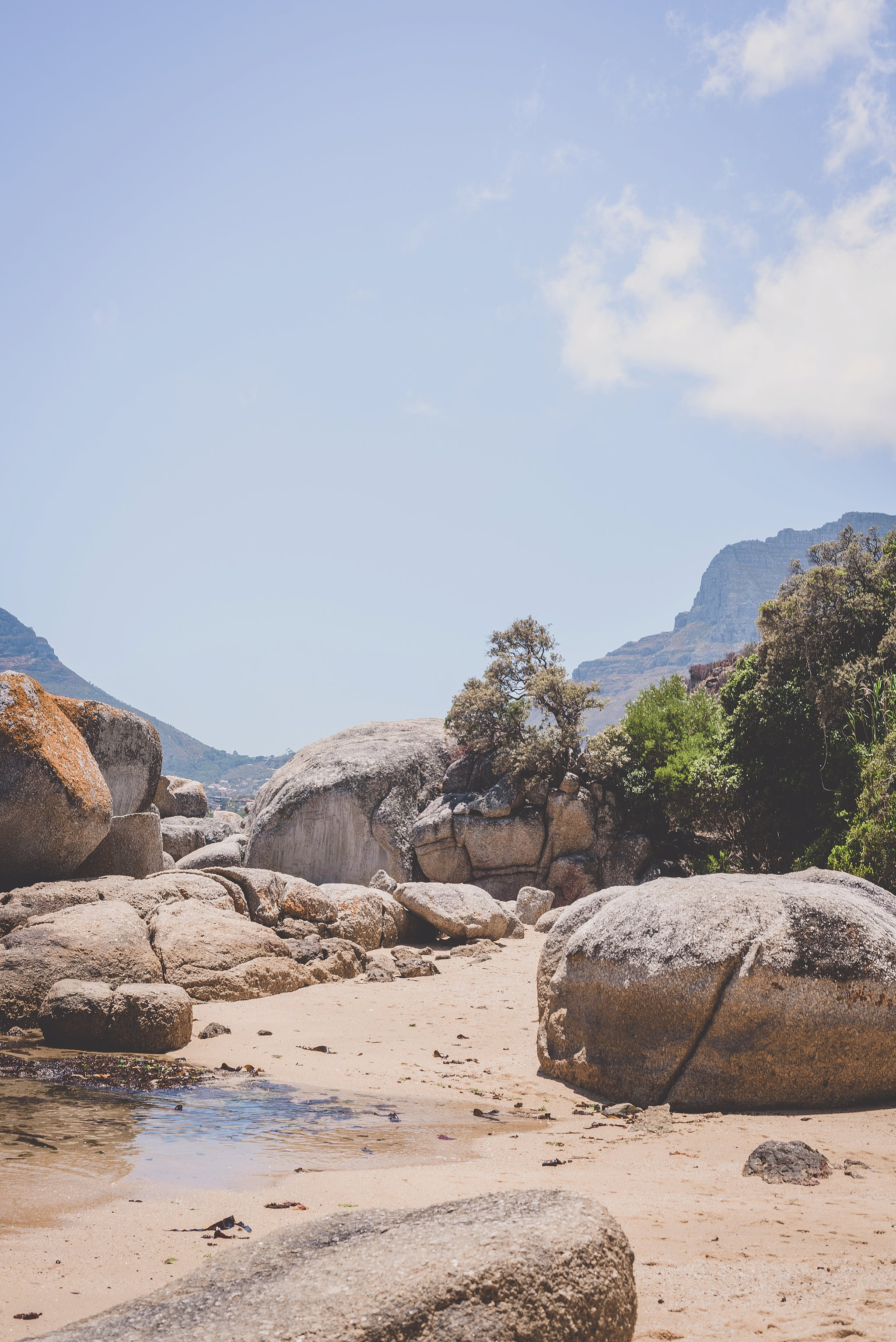 Angelique_Smith_Photography_Cape_Point_coupleshoot-159.jpg