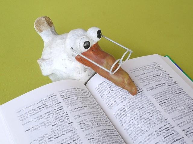 school bird reading book.jpg