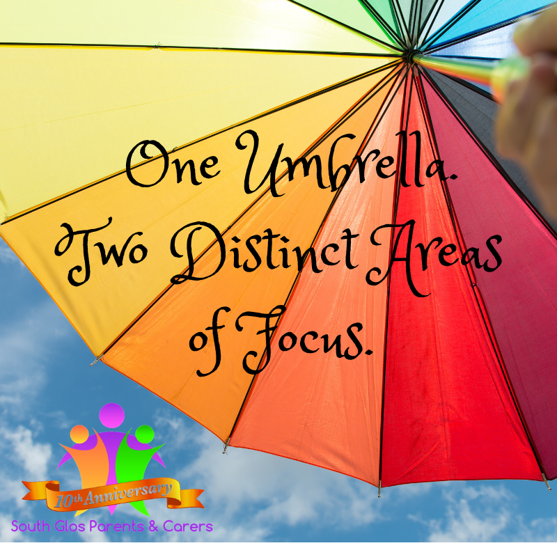 One Unbrella. Two Distinct Areas of Focus (1).png