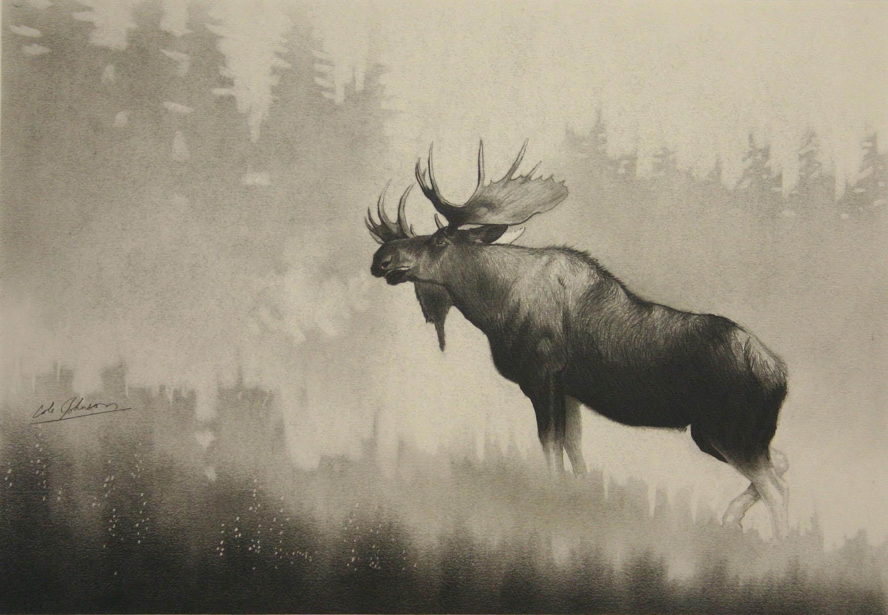 e Bull Moose.jpg