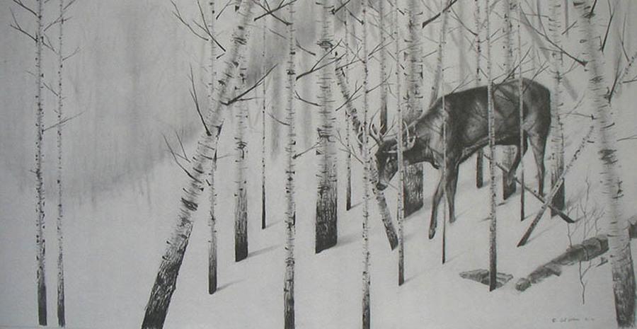 Birch Slope