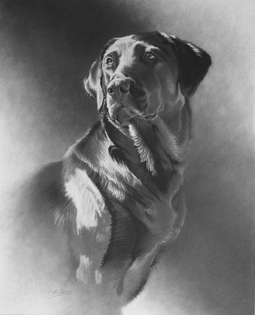 e Black Dog.jpg
