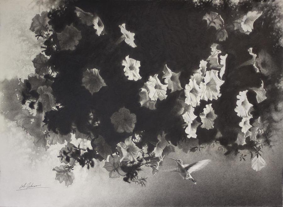 e Petunias w Hummingbird.jpg