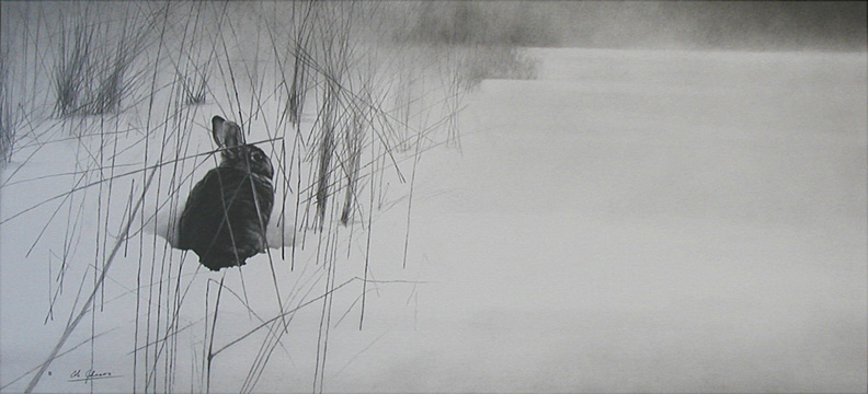 EM Fields Edge.jpg