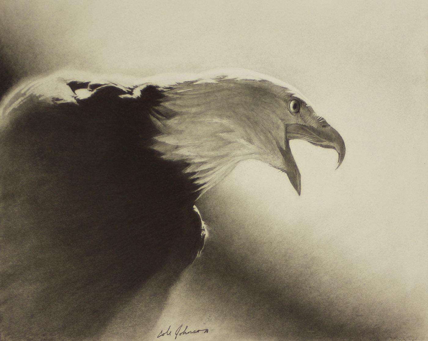 e Eagle study.jpg