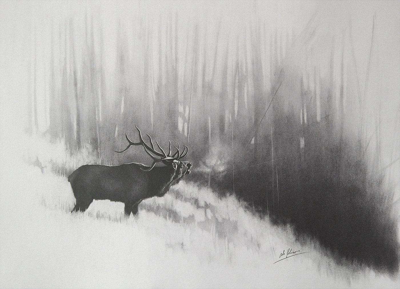 e Bull Elk 1.jpg