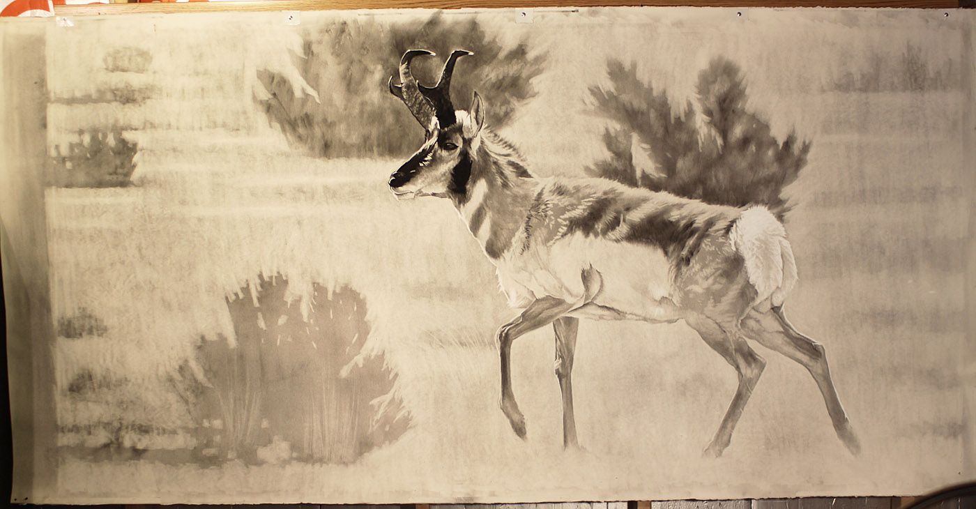 e 8ft Pronghorn in process.jpg