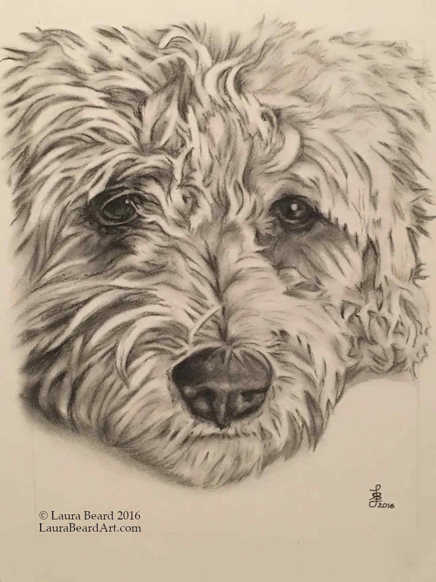 """""""Sparky in Charcoal"""""""