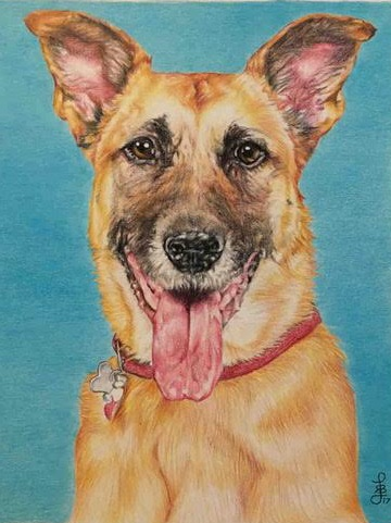 Portrait Commissions - I love creating beautiful commission paintings and drawings from photograph of pets, family, and even family homes. Click the CONTACT ME button below to inquire about commissioning a piece.