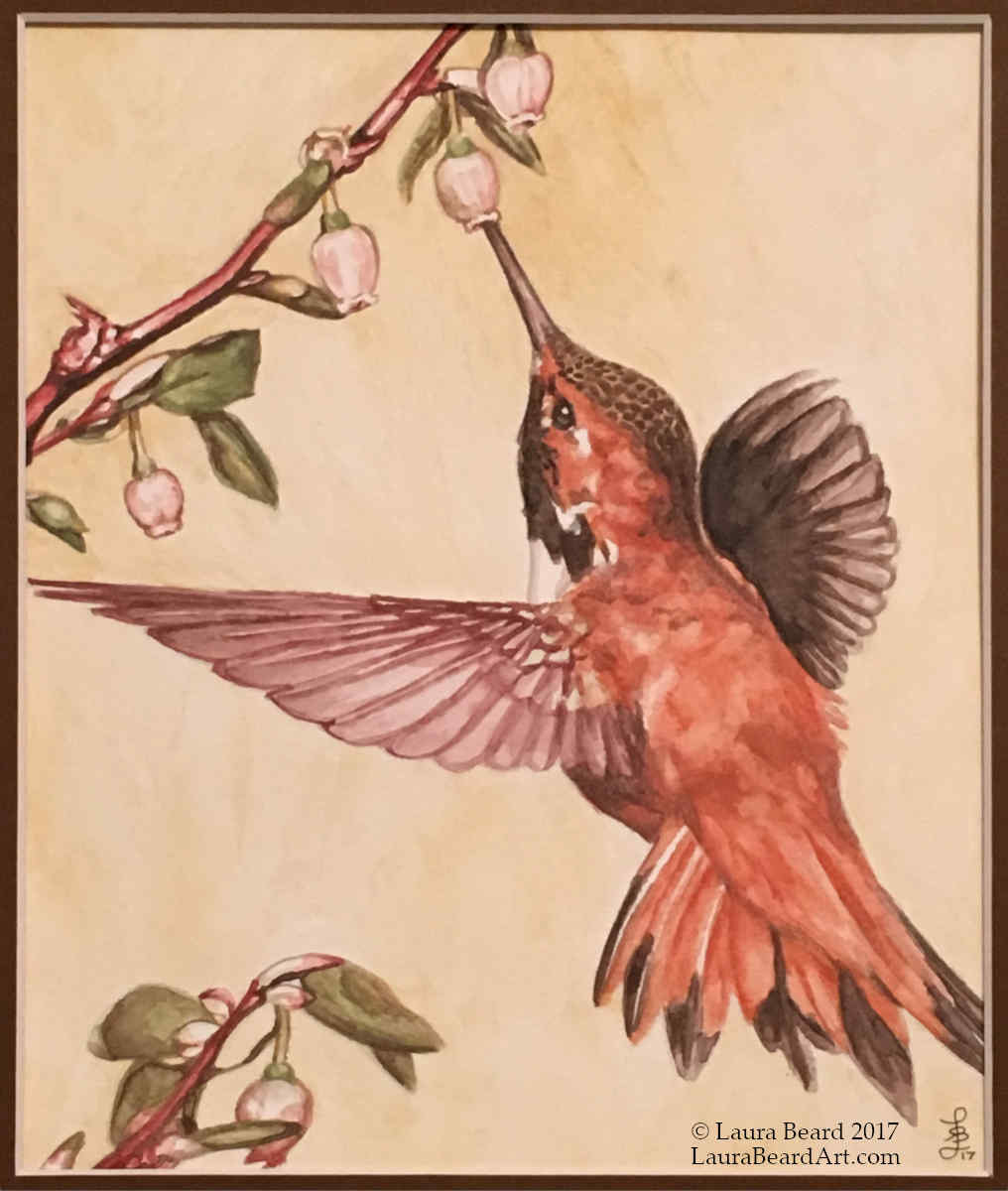 """""""Hummingbird with Blossoms"""""""