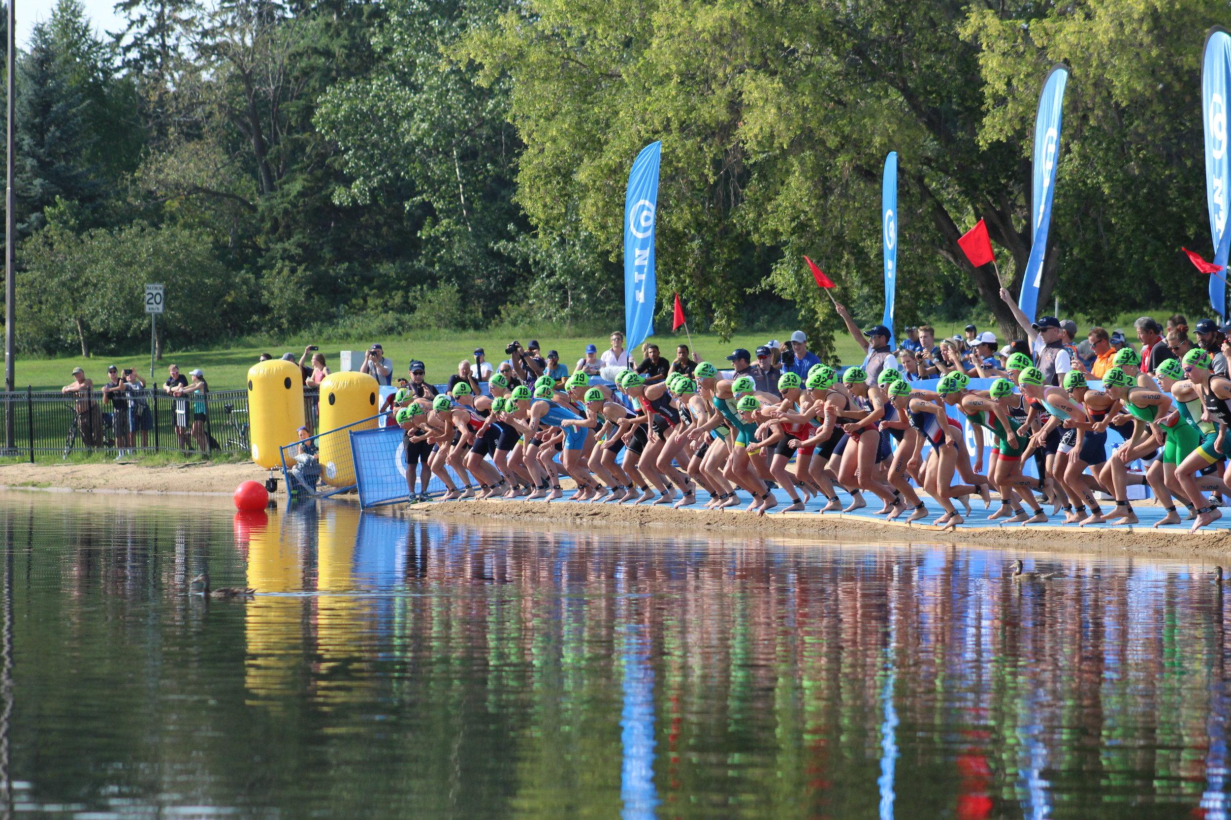 World Triathlon Series Edmonton triathlon race swim start