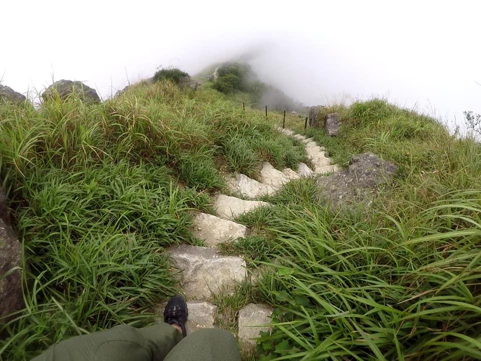 trail in Hong Kong running hiking.jpg