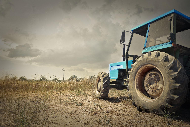 farming-yummy-pub-co.jpg