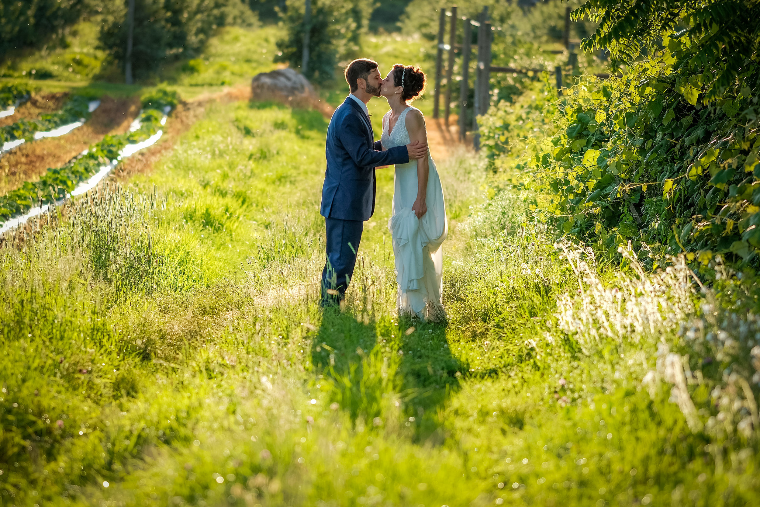 Peabody-Smith-Barn-Wedding-Photography-65.jpg