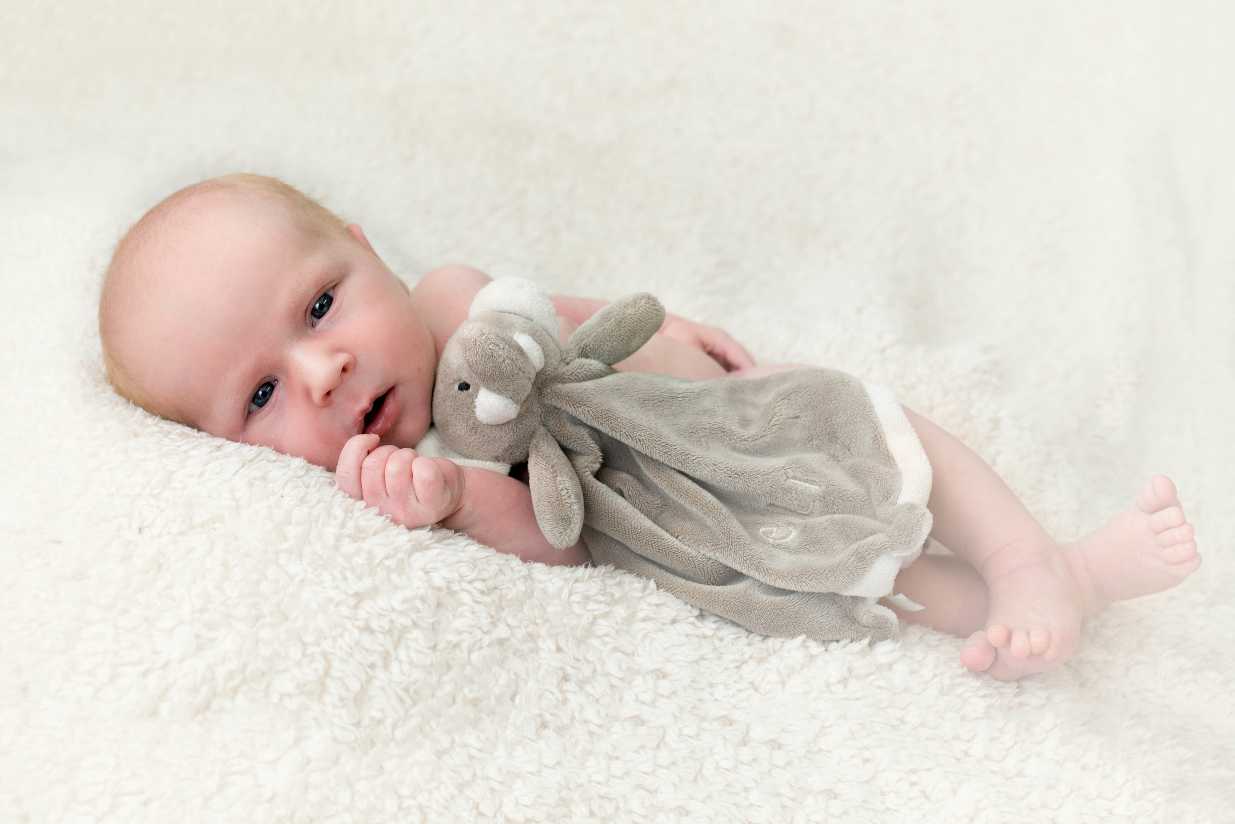 newborn-photographer-glasgow-open-eyes-with-elephant-toy