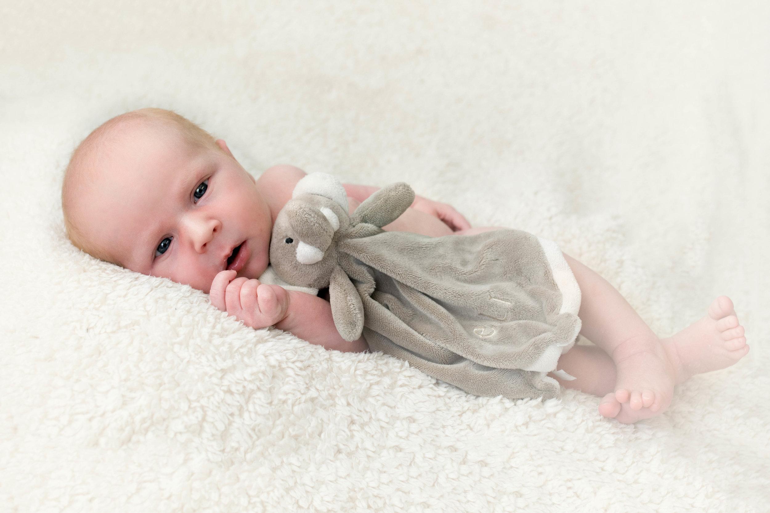 newborn-photographer-glasgow-open-eyes-with-elephant-toy