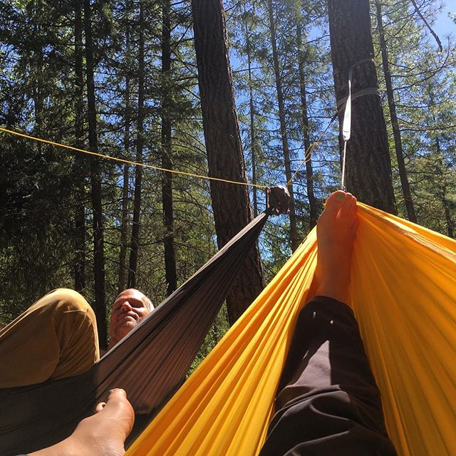 Hanging in the North Cascade pines #pnw #pnwonderland #love #camping #campvibes #hammock #getoverland #hammocking #getoutside #slowlife #hwy20 #yesplease #overlandhammock