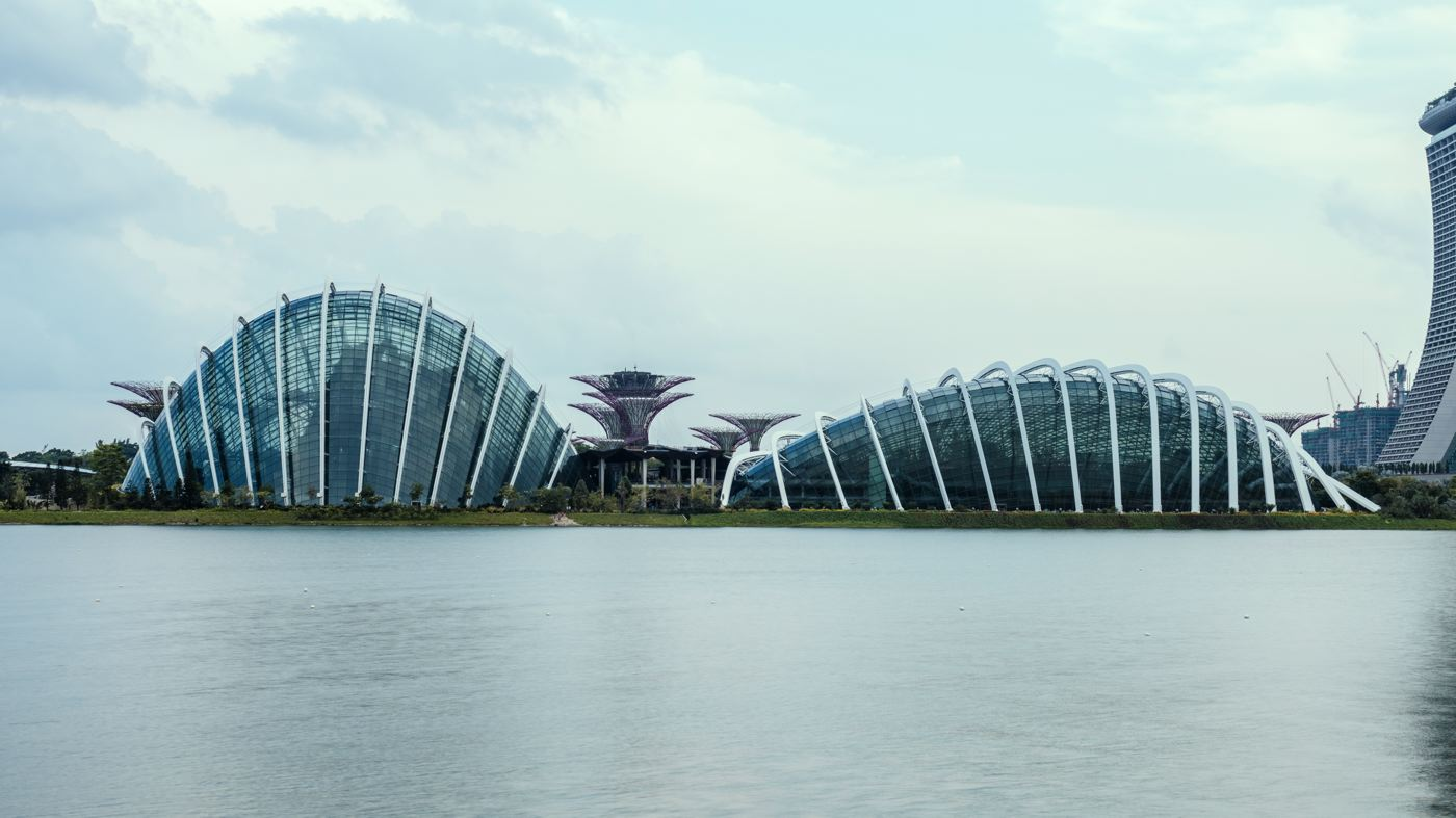 LDKphoto-SINGAPORE-FLOWER DOME-015.jpg