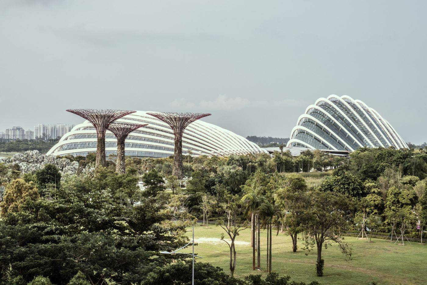 Flower Dome - Singapour<strong>- entrez -</strong>