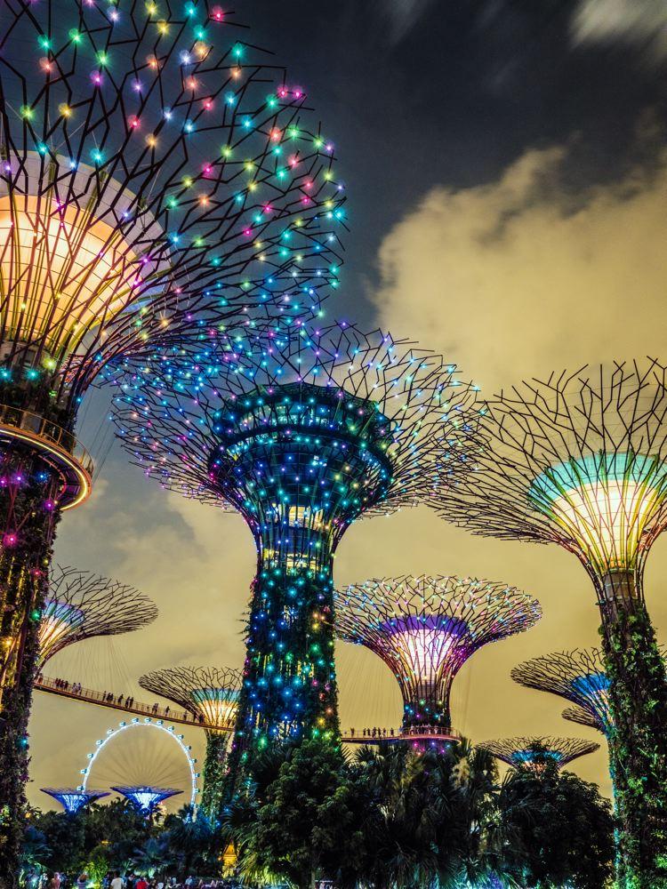 LDKphoto-SINGAPORE-SUPERTREE-010.jpg