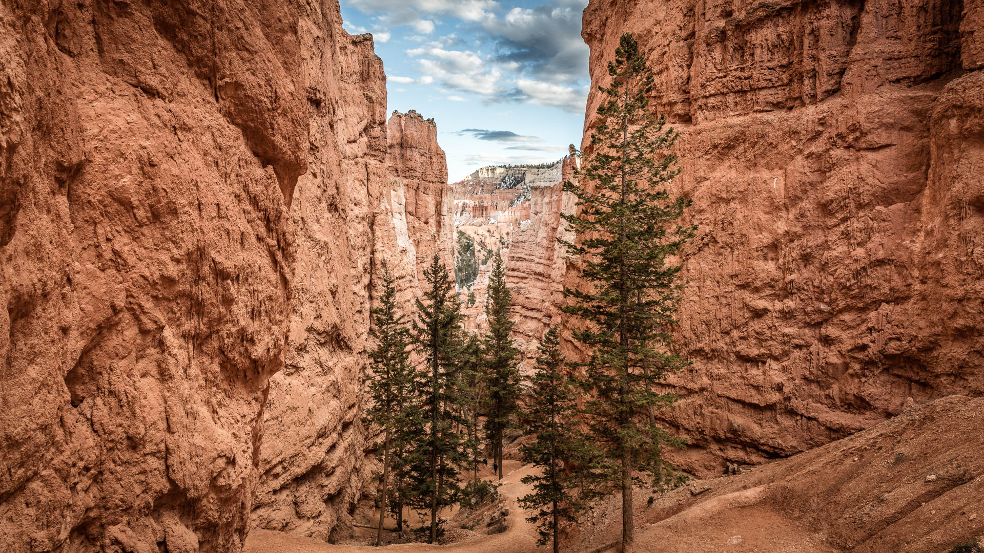 LDKphoto - Bryce Canyon - 13.jpg