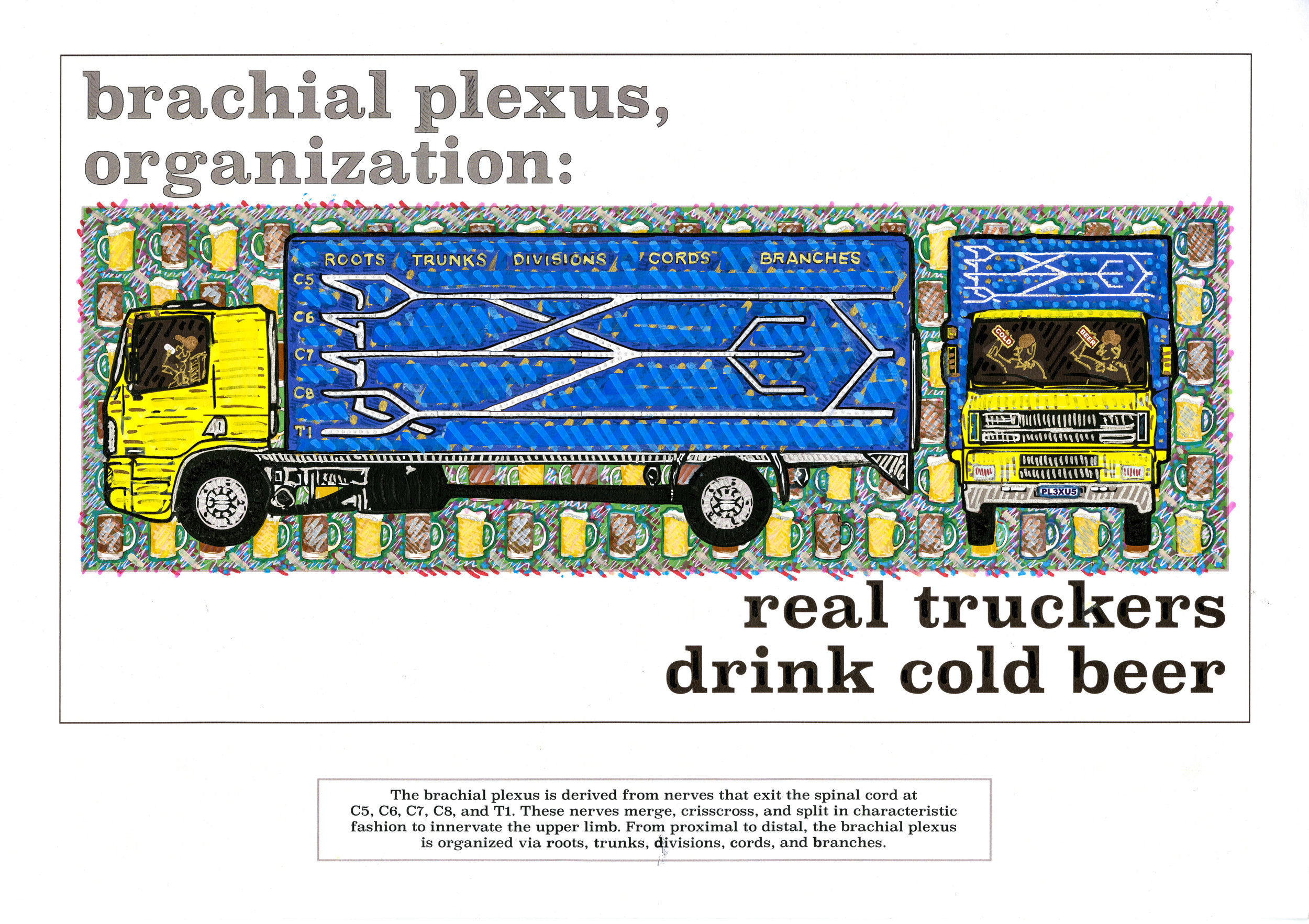 real truckers drink cold beer.jpg