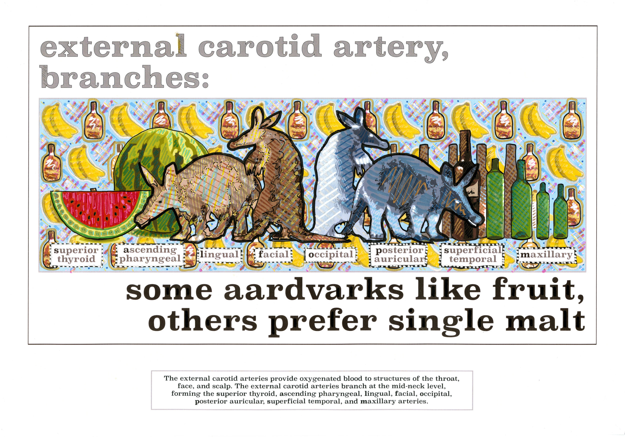 some aardvaarks like fruit.jpg