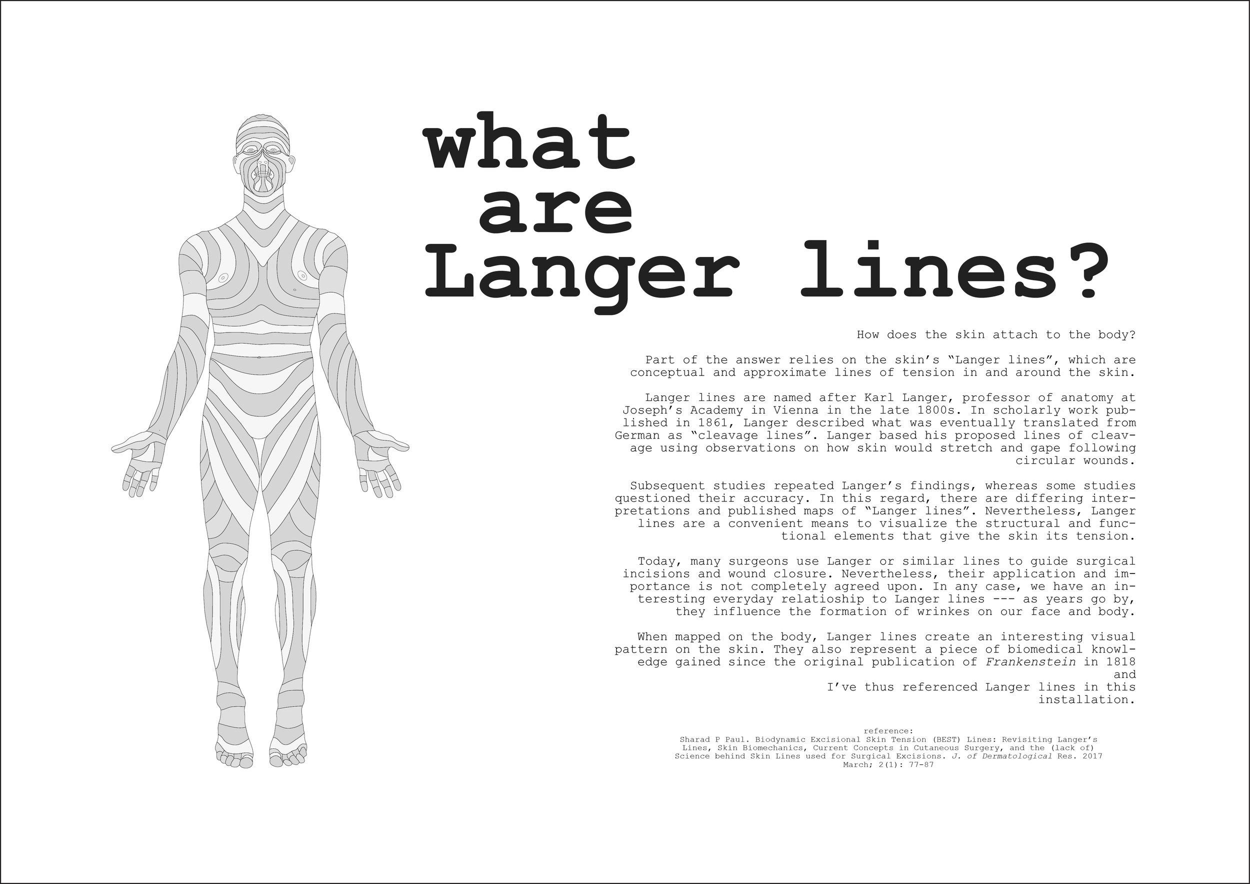 Langer lines