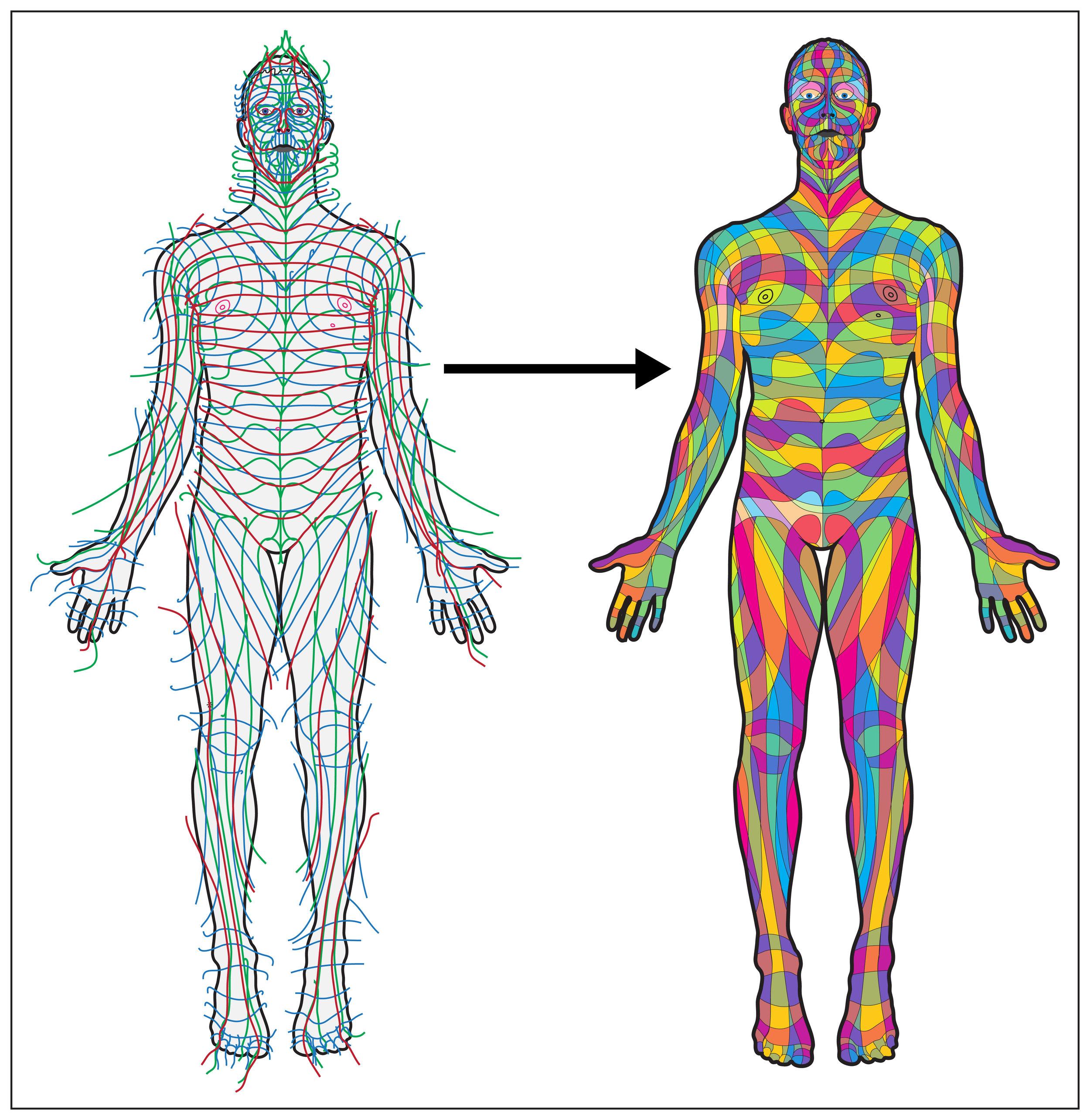Jama Lines Figure-1.jpg