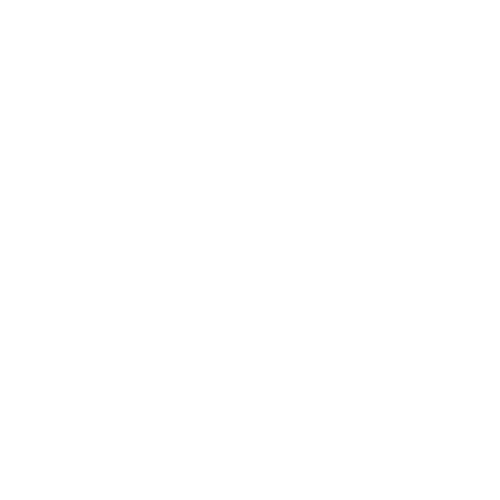 IT Security Icon White 2.png