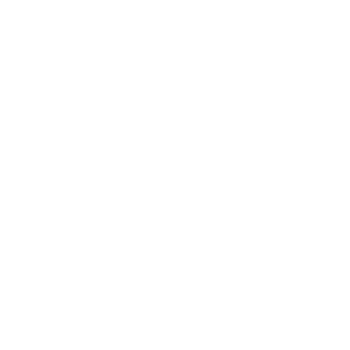 Networking Icon White 2.png