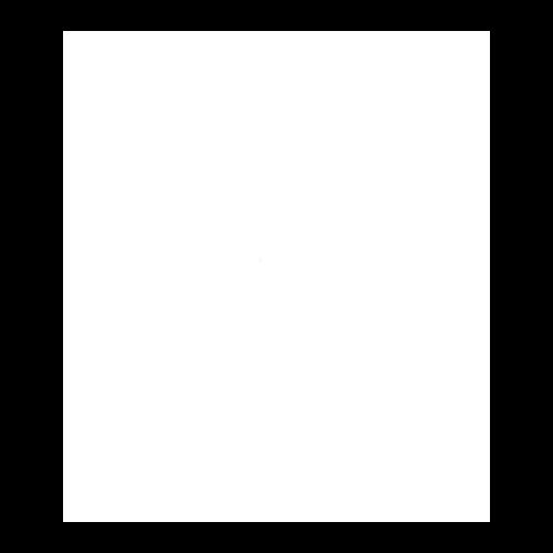 Box Icon White 2.png
