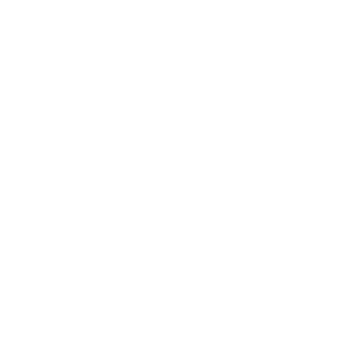 Moving Icon White 3.png