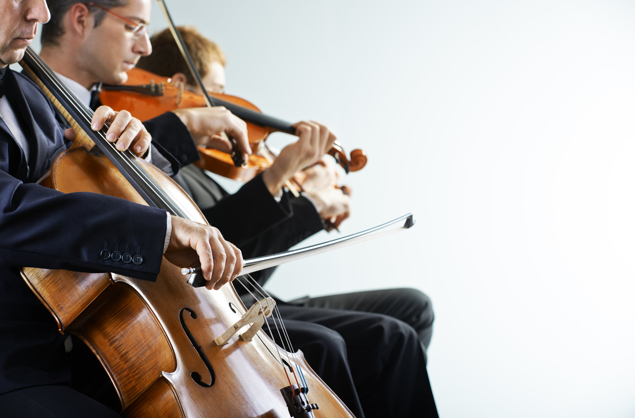 Music - We love all styles of music at Beau Strings. Our musicians are versatile, dynamic, and creative, performing a wide variety of genres, world music, and even composing special songs just for you. Just let us know what kind of style and atmosphere you're looking to create and we'll make it happen!