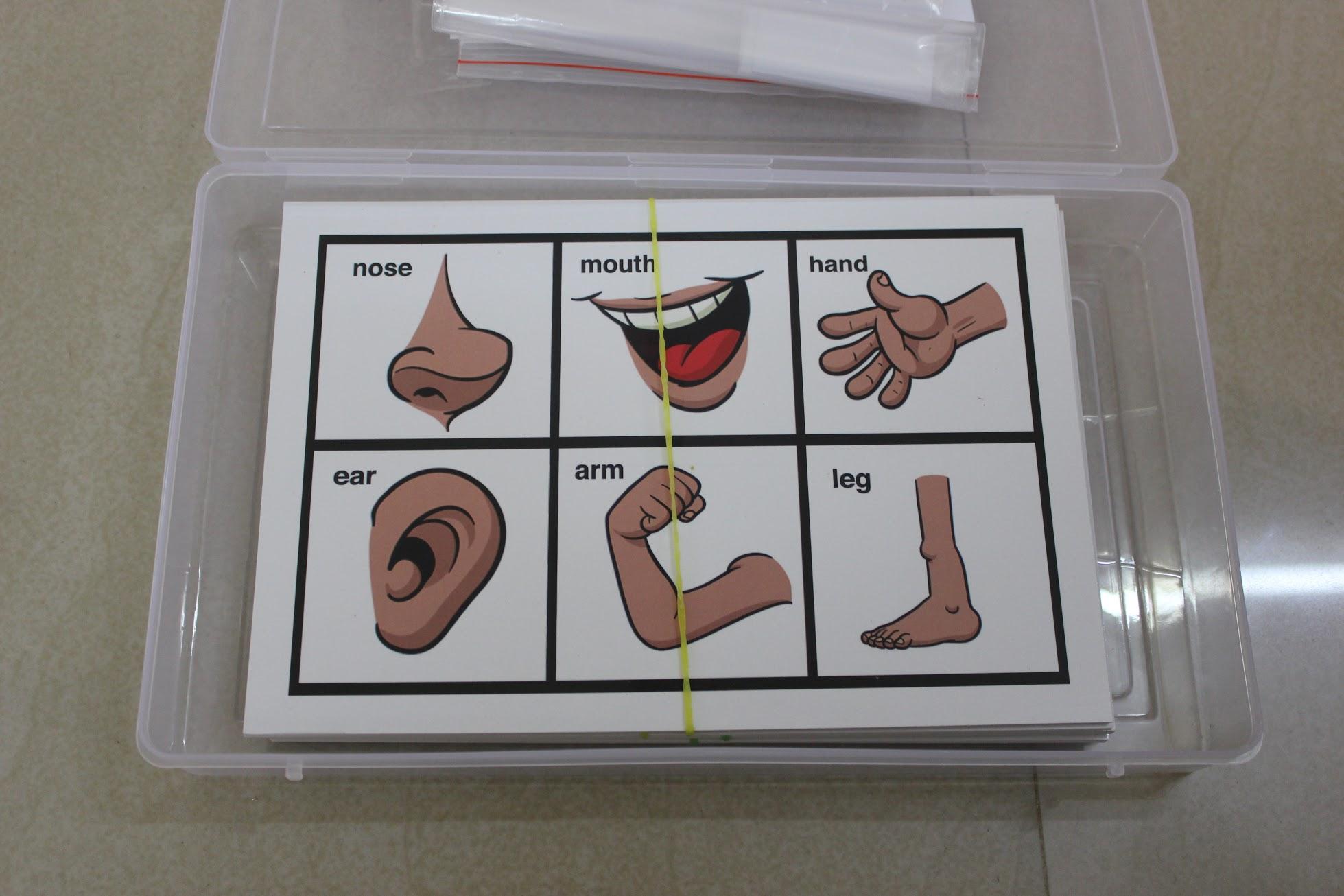 Body parts bingo for building vocabulary